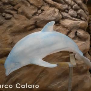 Scultura delfino polistirolo Marco Cafaro web (10)